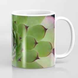 Houseleek (Sempervivum) Photo with purple tips viewed from the top dow Coffee Mug