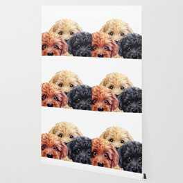 Toy poodle trio, Dog illustration original painting print Wallpaper