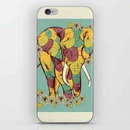 Color of Creation iPhone Skin