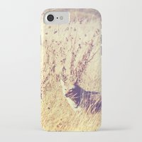 coyote iPhone & iPod Cases featuring Coyote  by Shelby Babbert Photography