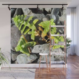 Watercolor Forb, Opposite Leaved Succulant 01, Borgarnes, Iceland Wall Mural