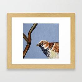 Eastern Songbird Series - Sparrow Framed Art Print