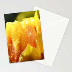 Raindrop Cactus Flower Stationery Cards