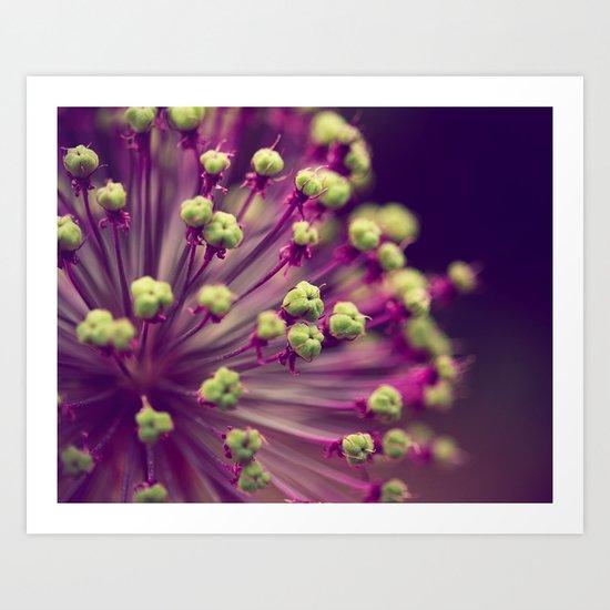 Purple and Lime Green Art Print