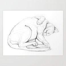Cat II   /  Chat II   /  Gato II Art Print