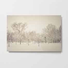 Winter Wonderland Number 1 Metal Print