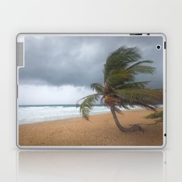 Windswept Palm tree Laptop & iPad Skin
