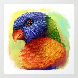 Rainbow lorikeet realistic painting Art Print
