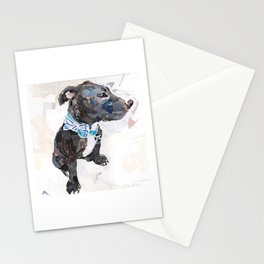 Ollie for Friends of the Shelter Stationery Cards