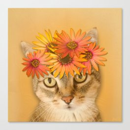 Tabby Cat with Daisy Flower Crown, Mustard Yellow Background Canvas Print