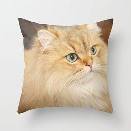 Fluffy Throw Pillow