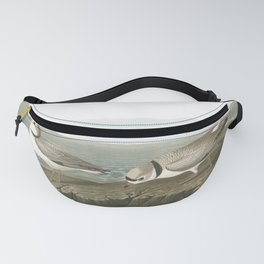 Piping plover, Birds of America, Audubon Plate 220 Fanny Pack