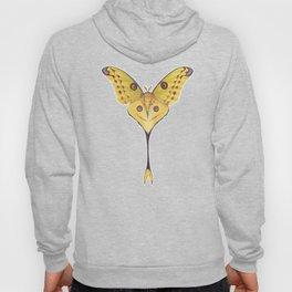 Comet moth (Argema mittrei) Hoody