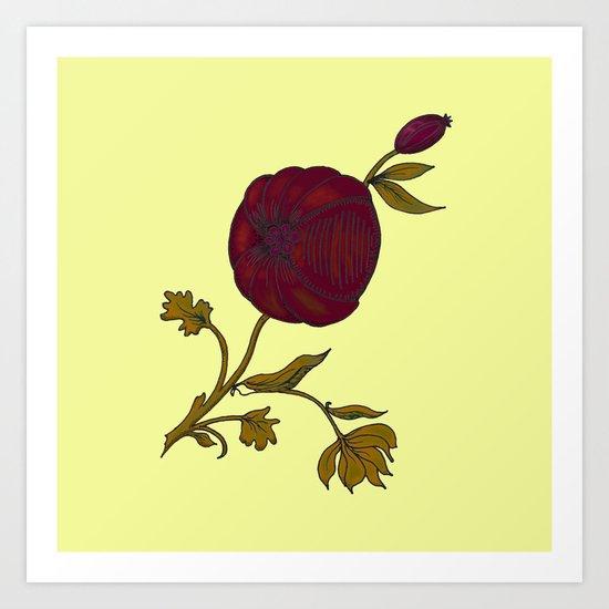 simple decorative pomegranate 3 Art Print