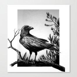 Corbeau Canvas Print