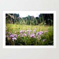 A Hint of Purple Art Print