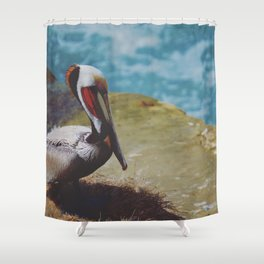 Pensive Pelican Shower Curtain