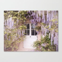 wisteria of the unknown Canvas Print