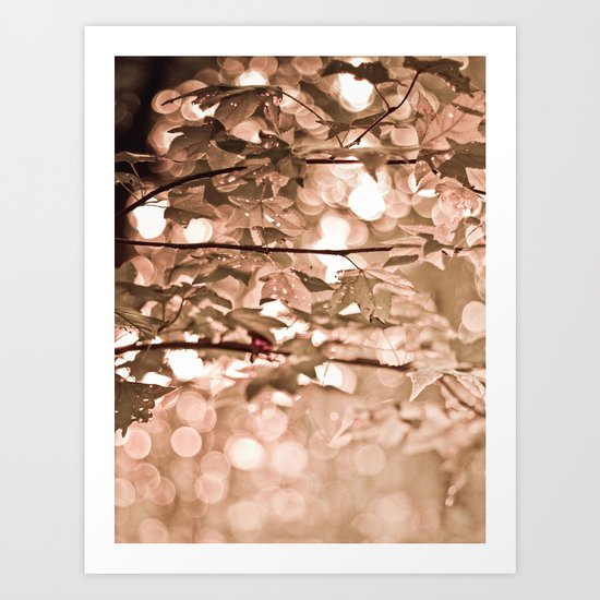 Dappled Sun Art Print