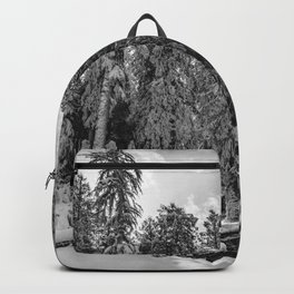 Oregon Adventures Black and White - Nature Photography Backpack