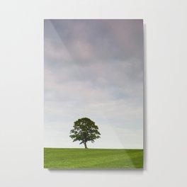 The Ferry Tree Metal Print