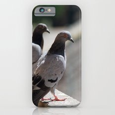 whats up iPhone 6 Slim Case