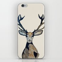 stag iPhone & iPod Skins featuring Stag by The Art Hutch