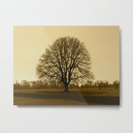 tree xrays Metal Print