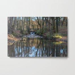 Cannop Brook - 2 Metal Print