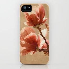 Magnolias In Bloom iPhone Case