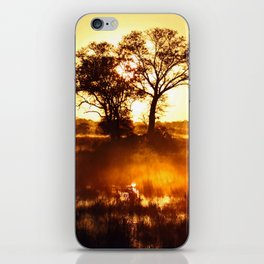 Morning in Africa iPhone Skin