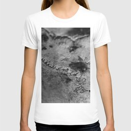 Sutures On The Cow Skull T-shirt