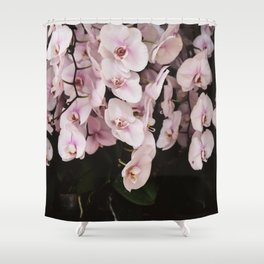Orchids in Hong Kong Shower Curtain
