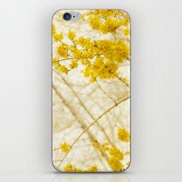 Forsythia iPhone Skin