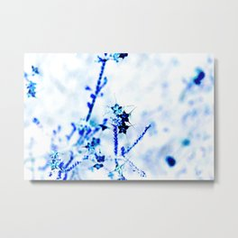 Outback flowers blue and white Metal Print