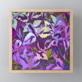 More Lovely Leaves, Purple Shades Framed Mini Art Print