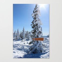 Winter mountans Canvas Print