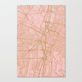 Pink and gold Medellin map, Colombia Canvas Print