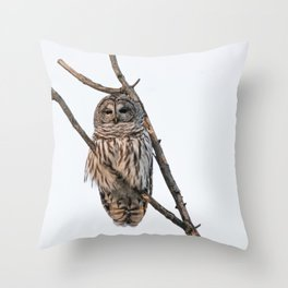 Barred Owl visitor on New Years Eve Throw Pillow