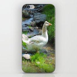 Goose iPhone Skin