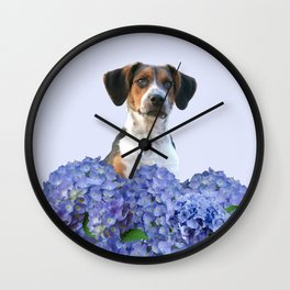 Hydrangea Blossoms  - Jack Russell terrier Dog Wall Clock