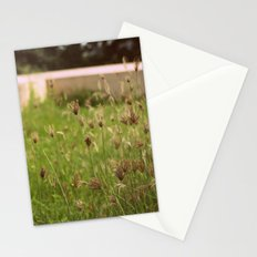 Wild Shrubs Stationery Cards