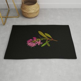 Rhododendron Ponticum Mary Delany British Botanical Floral Art Paper Flowers Black Background Rug