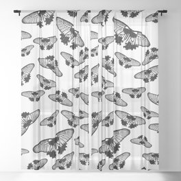 Butterflies in black and white Sheer Curtain