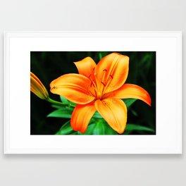 Orange is Happy Framed Art Print