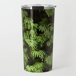 fern canyon Travel Mug