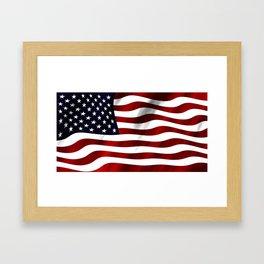 American Flag Illustration for the Patriot in your Life Framed Art Print