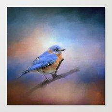 The Happiest Blue - Bluebird Canvas Print