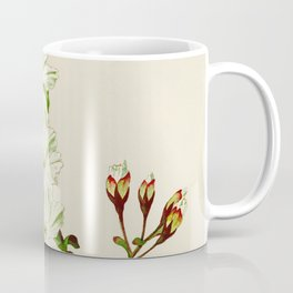 Gyoi-ko or Robe Yellow Cherry Blossoms Coffee Mug