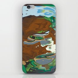 The palette of earth iPhone Skin